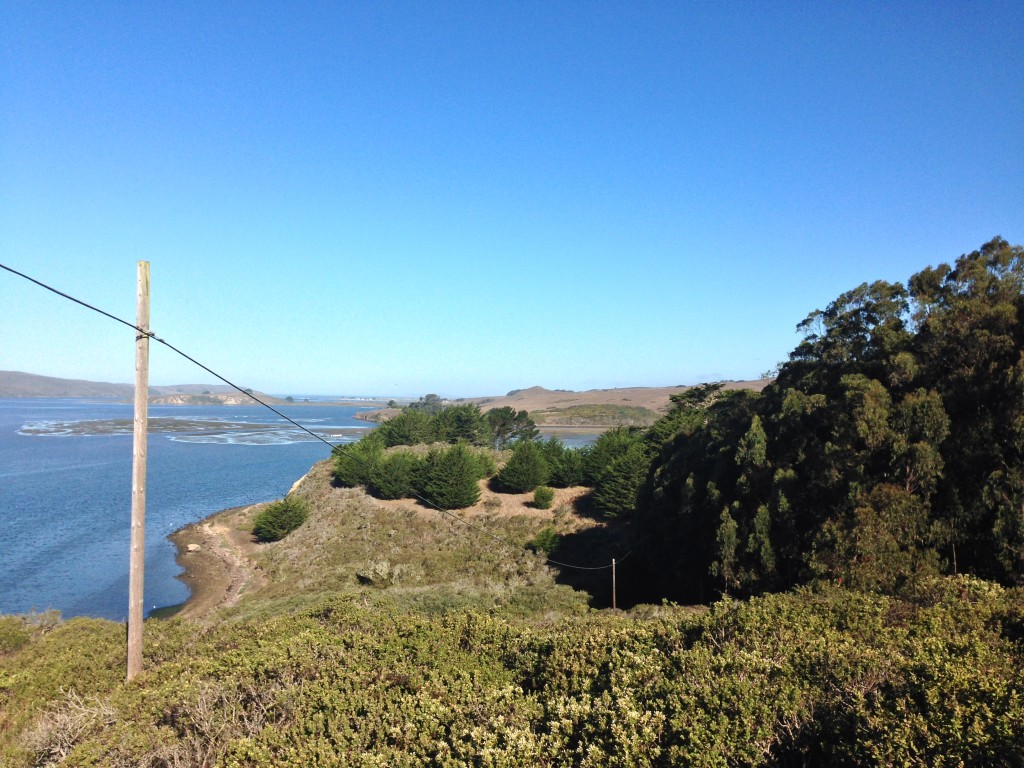 Tomales Bay as viewed from Miller Park.